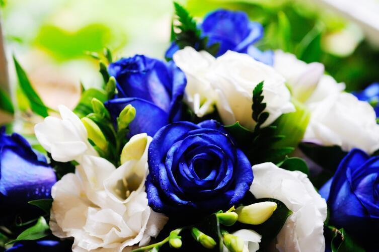 Первые синие розы получили благодаря пищевому красителю