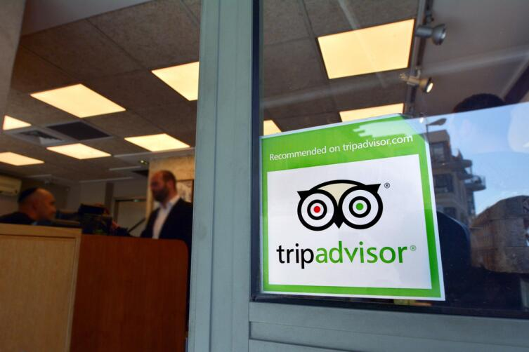 Мудрая сова - логотип TripAdvisor