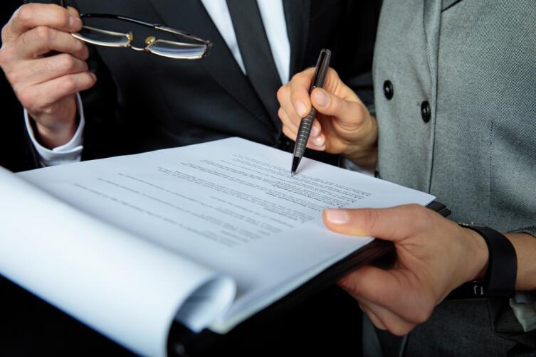 Договор может включать любые пункты, по усмотрению владельца