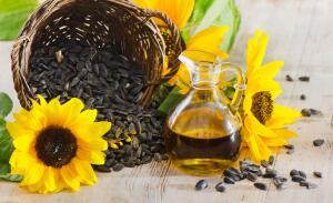 Чем заменить подсолнечное масло?
