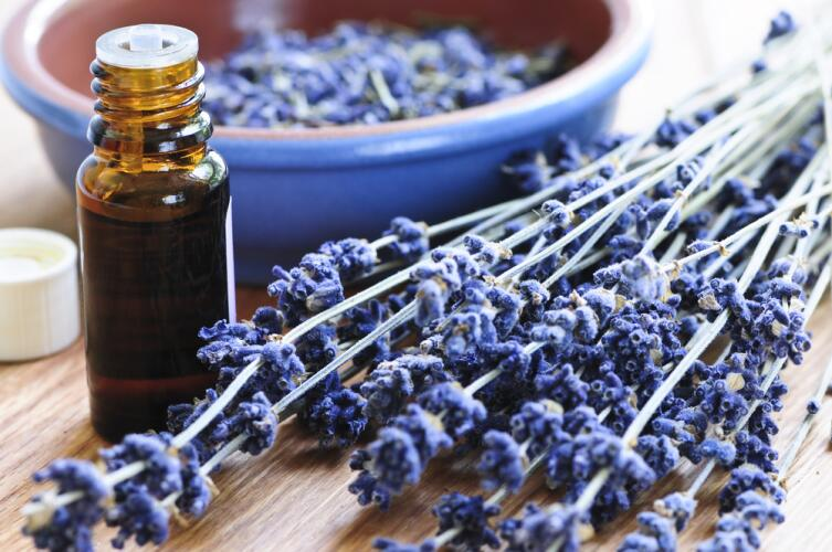 Эфирное масло лаванды наполнит дом ароматами прованских трав