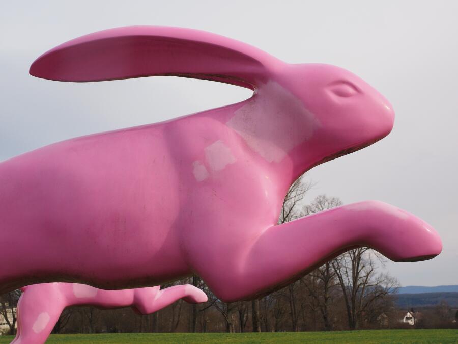 Питерские зарисовки. Что скрывает «Розовый кролик»?