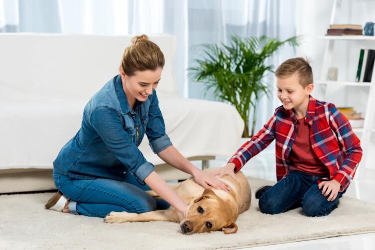 Сформируйте поведенческие реакции ребенка