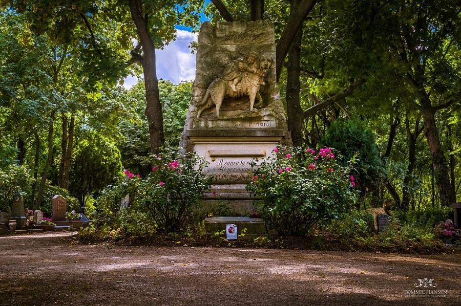 Памятник Барри на кладбище собак во Фpaнции