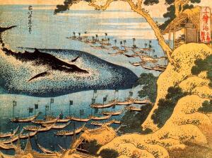 Для чего люди охотились на китов?