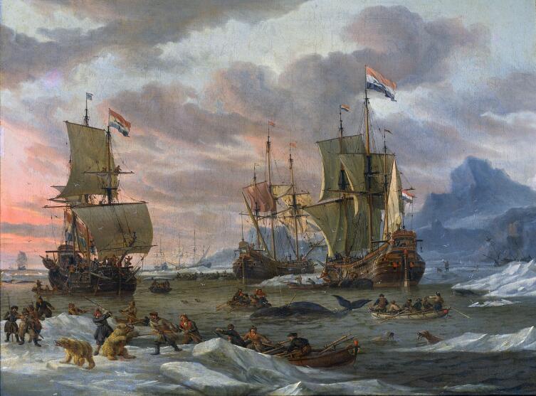 Абрахам Сторк, «Китобойный промысел в полярных морях»