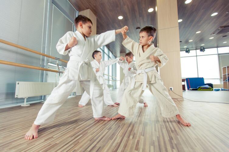 Карате - японское боевое искусство