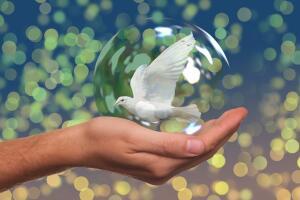 Экология и мы. Как жить в гармонии с природой?