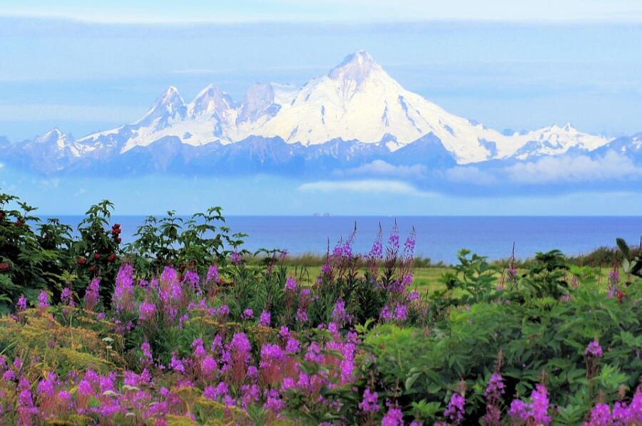 Гора Илиамна, Аляска