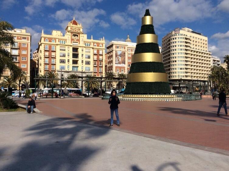 Рождественская ель в Малаге