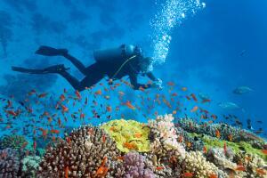 Как человечество осваивает океаны? Проникновение в глубины