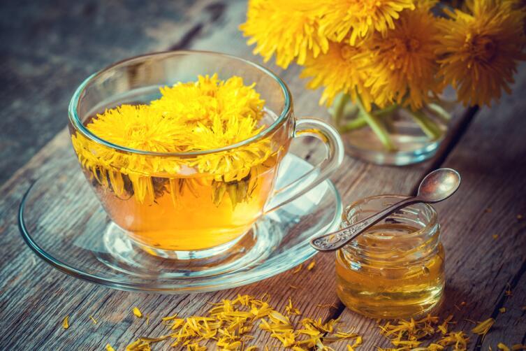 Чем полезен чай из корней одуванчика?