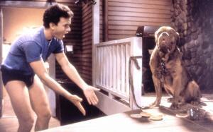 Как снимали фильм «Тёрнер и Хуч» (1989)?