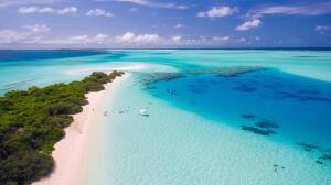 Почему Мировой океан синеет?