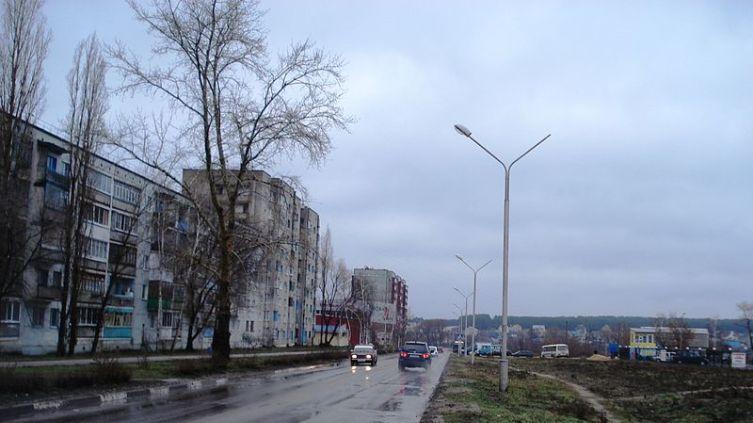 Улица Космонавтов в Нововоронеже