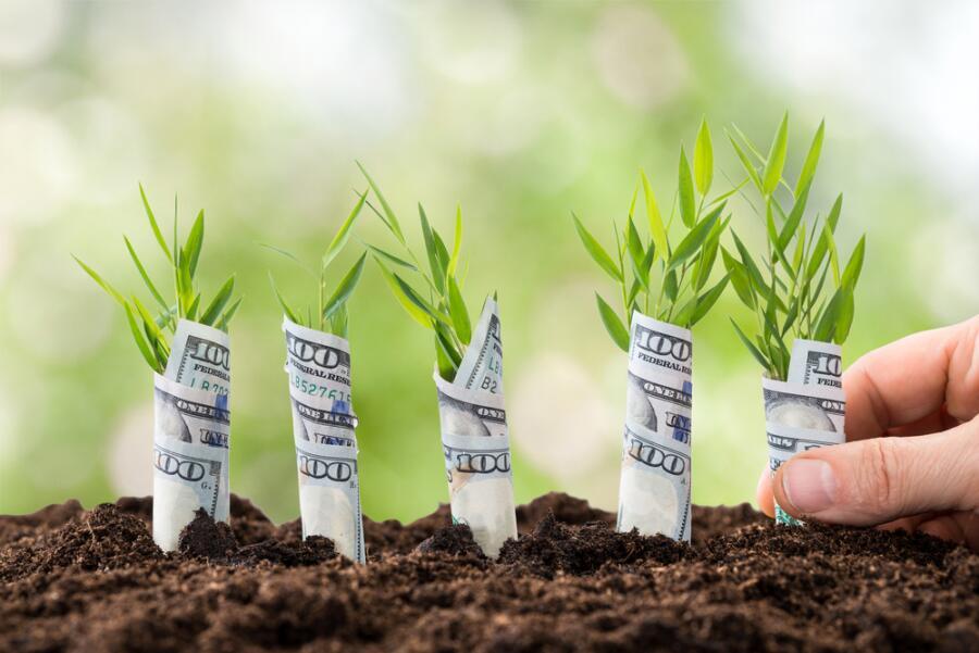 Как заработать хорошие деньги? Три шага на пути к финансовому успеху
