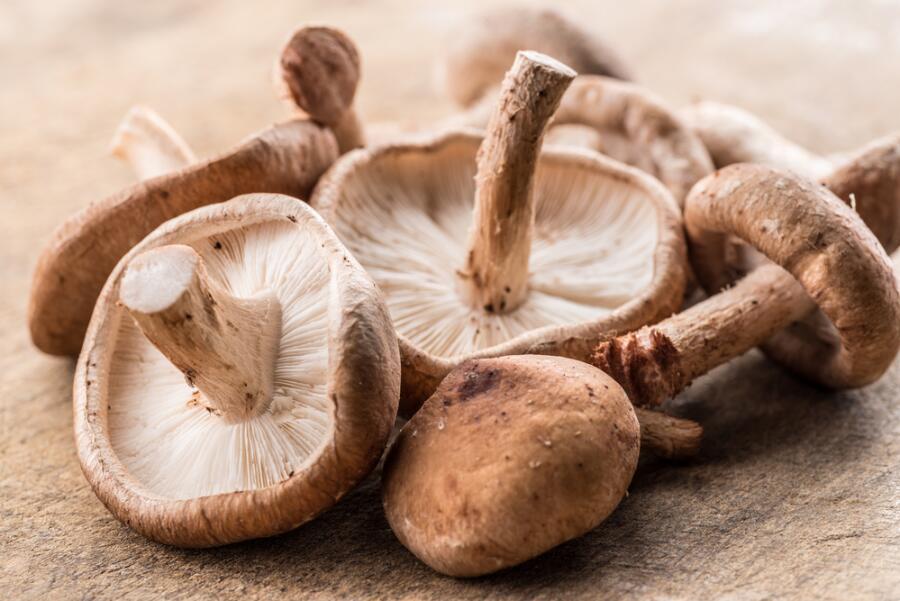 Шиитаке. Что за дивный гриб китайский?