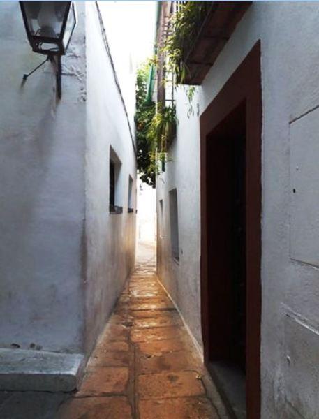 Улица носового платка, самая узкая в городе