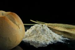Современная биотехнология появилась после открытий Пастера и началась с производства стандартных заквасок для хлебопекарной и пивоваренной промышленности.