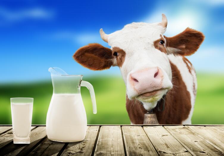 Отдавайте предпочтение натуральному молоку