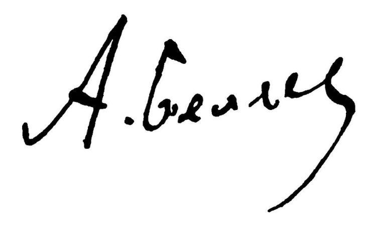 Подпись Беляева
