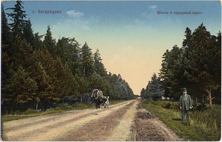 Шоссе проходящее через парк города Богородск