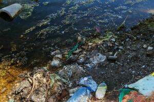 Проблемы экологии. Какой континент может уничтожить жизнь на Земле?