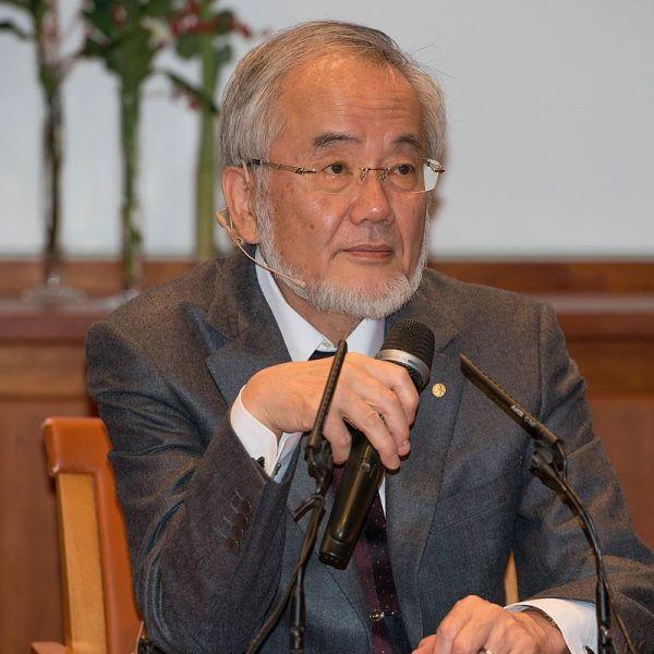 Ёсунори Осуми