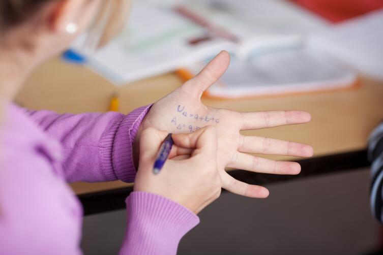 Шпаргалки запрещены и при ее обнаружении ученика могут удалить с экзамена
