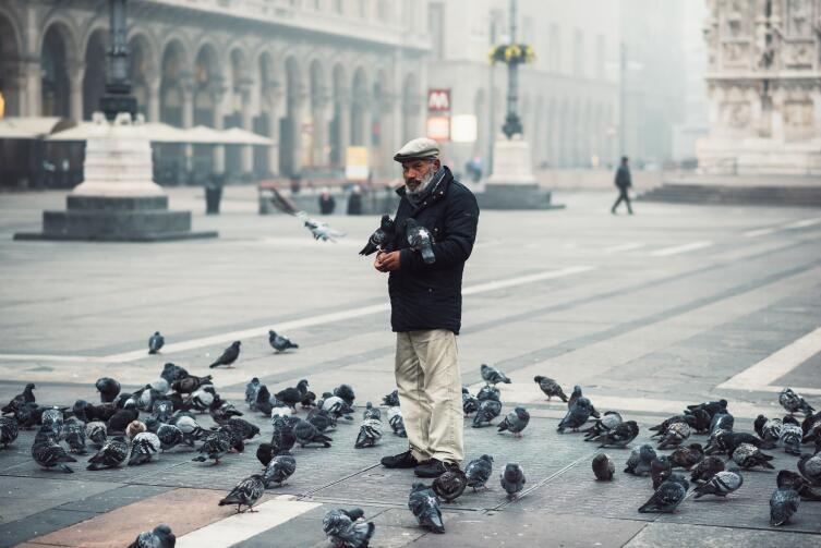 Не кормите голубей в Италии