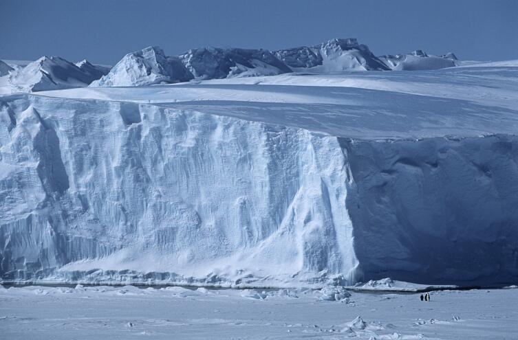 Метеориты можно искать в Антарктиде