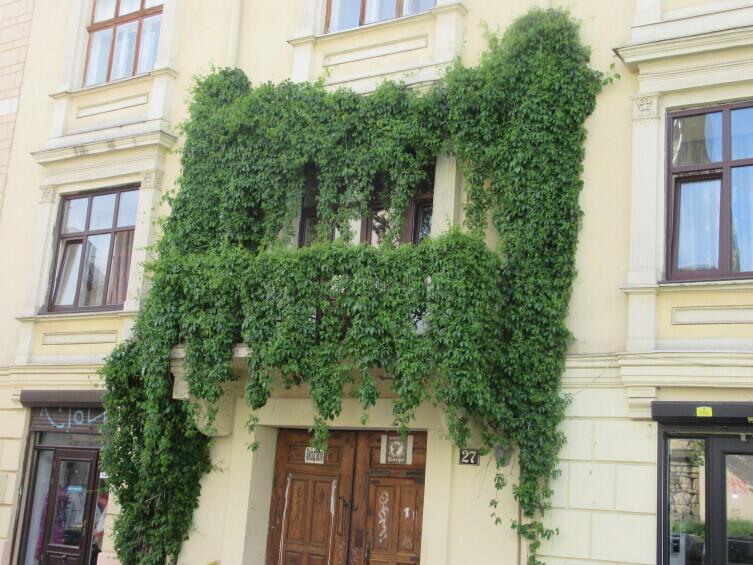 Дом в районе Высокого Замка