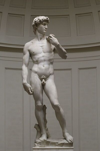 Давид (Микеланджело)