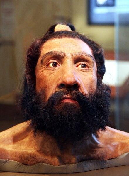 Реконструкция одного из найденных в пещере Шанидар  останков человека