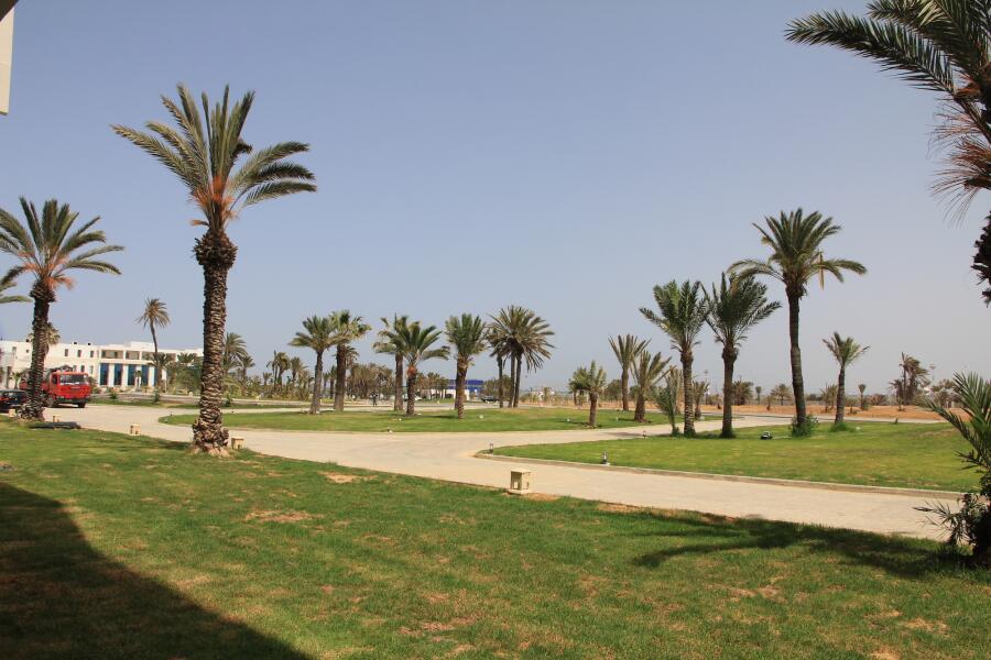 Как разнообразить пляжный отдых в Тунисе?