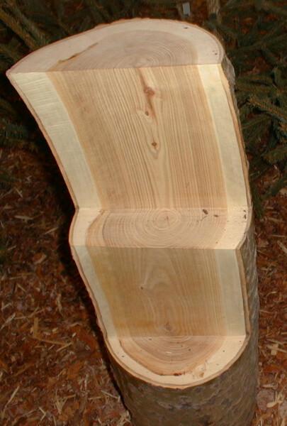 Древесина осины
