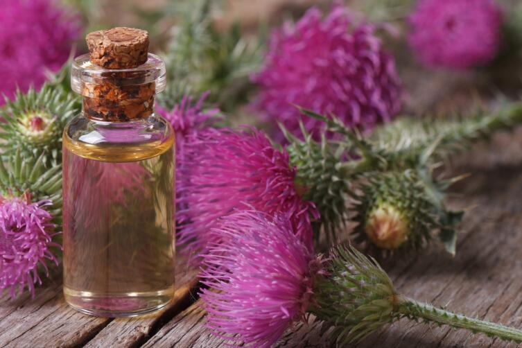 Репейное масло способствует росту и укреплению волос