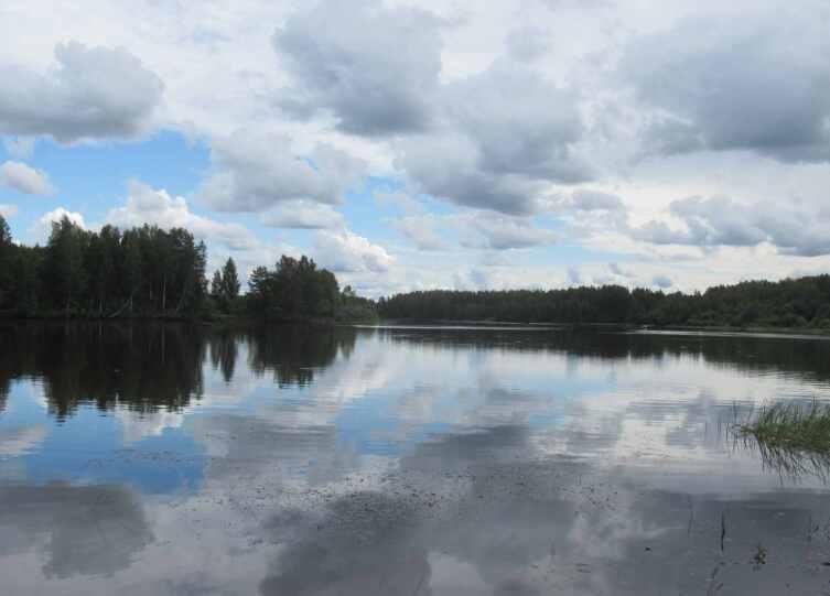 Река Суда. Вид от усадьбы