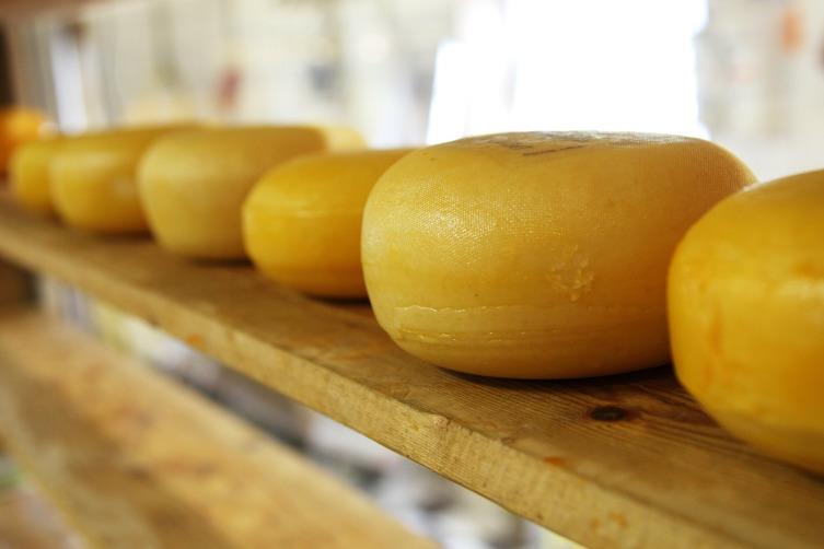 Что мы знаем о сыре? Сыр в истории, искусстве, философии и на столе