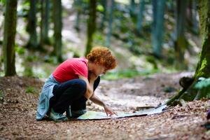 Пошли в лес и заблудились. Что делать?