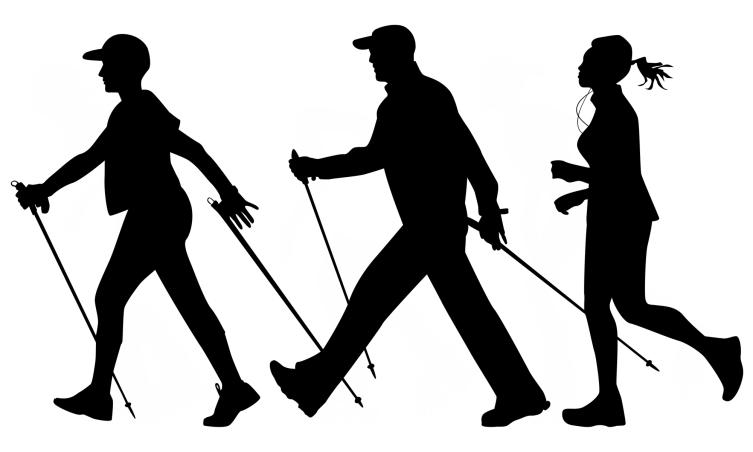 Регулярная ходьба с палками поддерживает тонус всего организма на хорошем физическом уровне