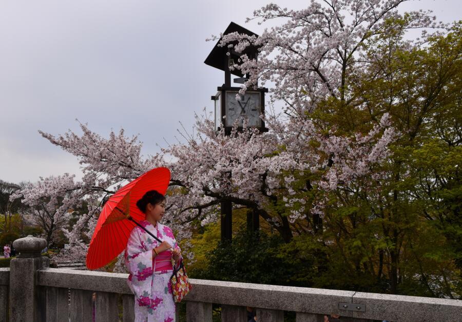 Зачем японские хайку в России? Философия, общение, бизнес