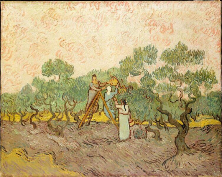 Винсент Ван Гог, «Сбор оливок», 1889 г.