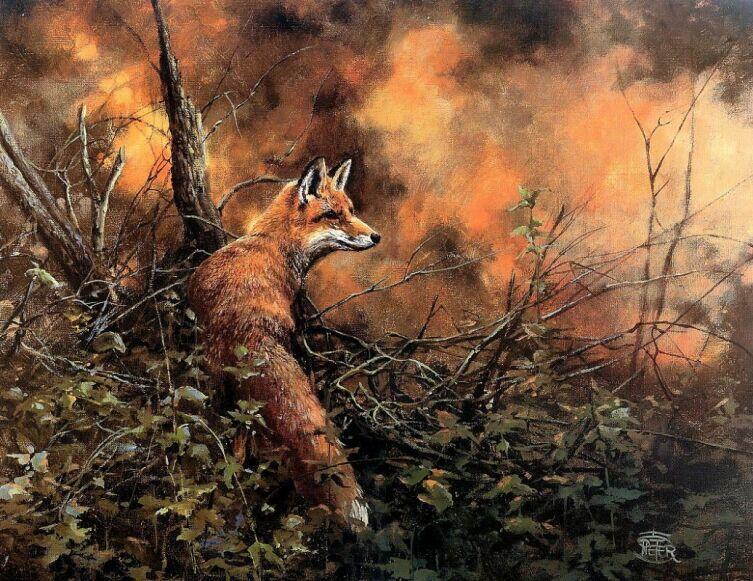Питер Верстаппен, «Пожар в лесу»