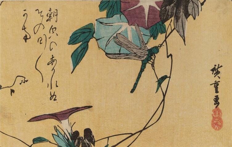 Утагава Хиросигэ, «Стрекоза на стебле ипомеи», 1830-е гг.