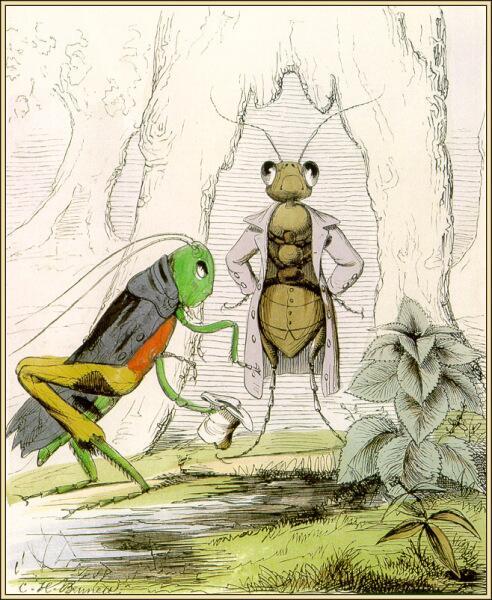 Чарльз Беннетт, «Стрекоза и муравей»