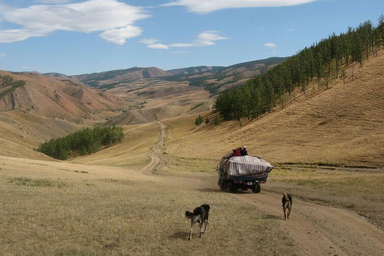 Монгольские кочевники в переходе на северное стойбище