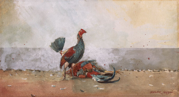 Уинслоу Хомер, «Петушиный бой», 1885 г.