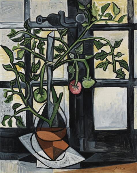 Пабло Пикассо, «Куст помидоров», 09.08.1944 г.