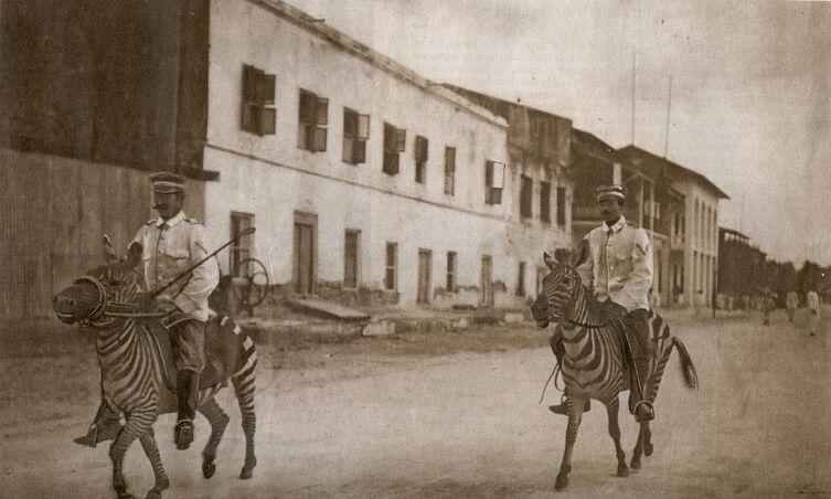 Немецкая кавалерия в Восточной Африке, 1911 г.